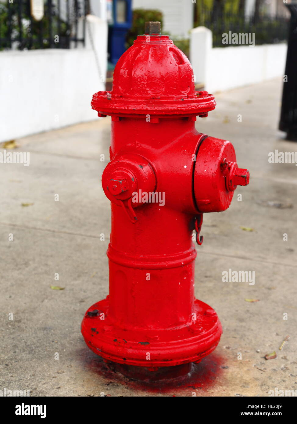 Red fire hydrant in Key West, Florida, USA - Stock Image