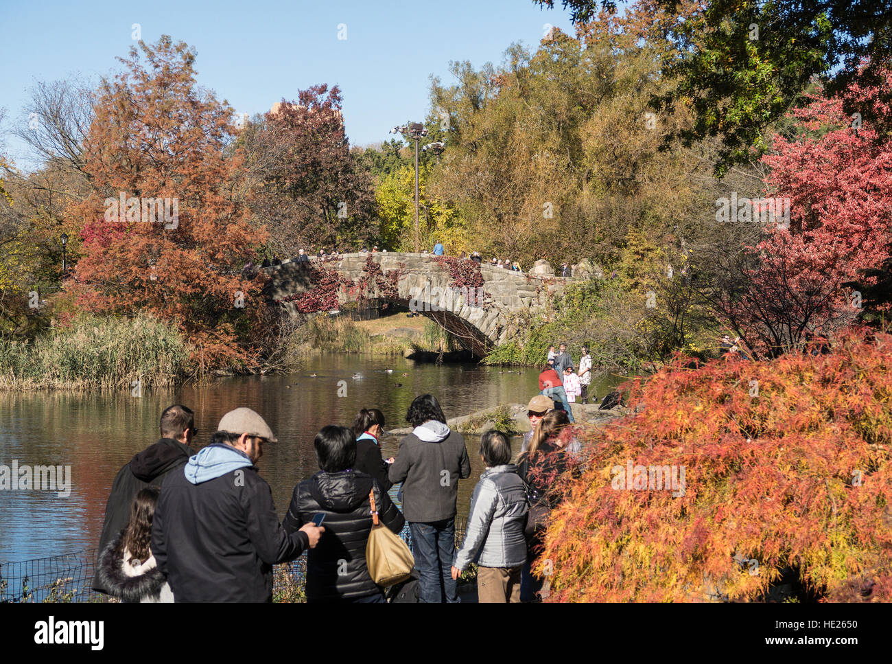 The Pond and Gapstow Bridge, Central Park, NYC - Stock Image