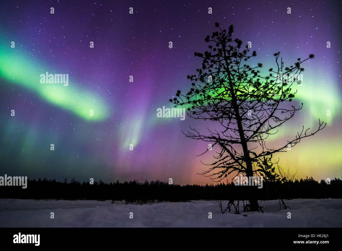 Northern lights in Oulu, Finland - Stock Image