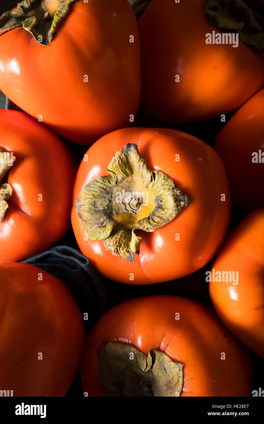 Raw Organic Orange Perssimons Ready to Eat - Stock Image