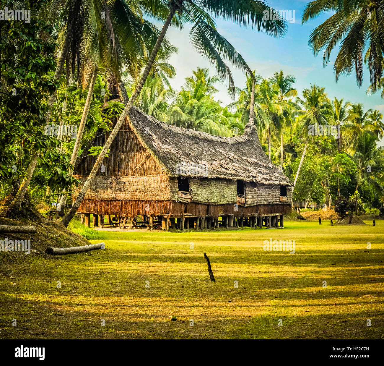 Large House Made Of Straw And Wood Surrounded By Greenery In Palembe, Sepik  River In Papua New Guinea. In This Region, One Can Only Meet People From I