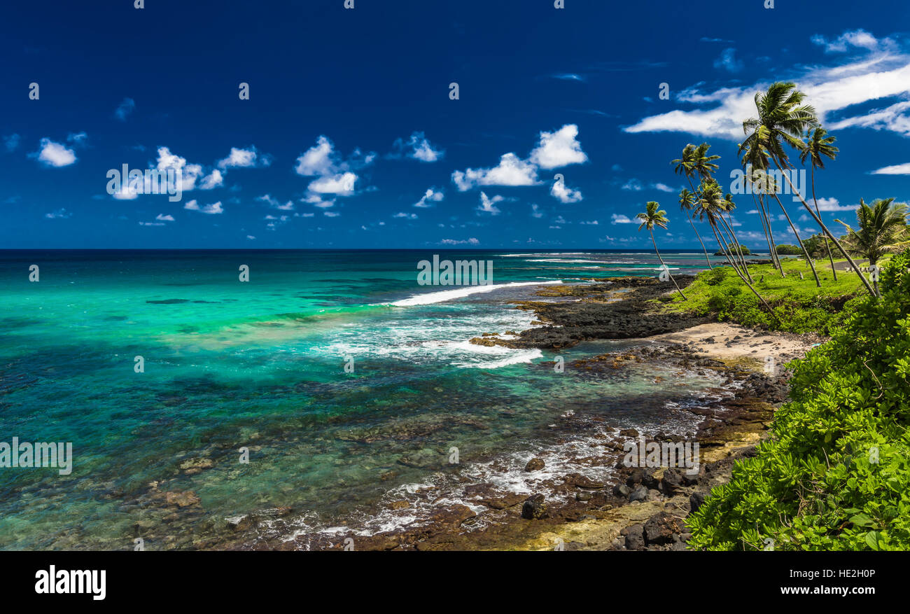 Tropical volcanic beach on Samoa Island with many palm trees, South Pacific - Stock Image
