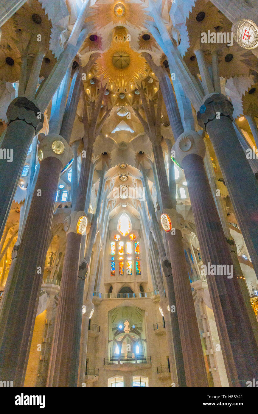 The columns of the inside of the Sagrada Familia in Barcelona, Spain look like a forest of concrete trees. - Stock Image