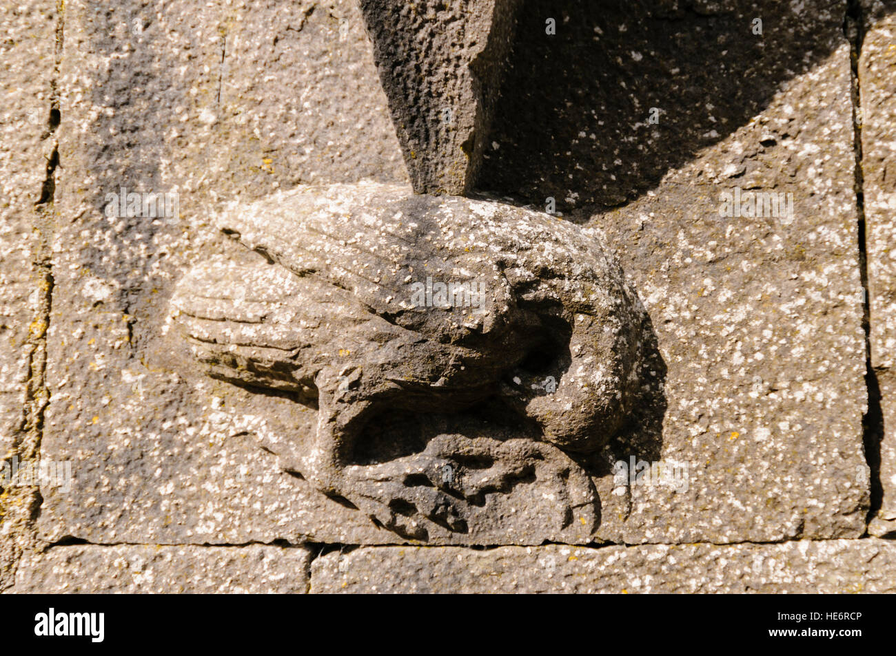 Carved raven stonework in Strade Abbey, County Mayo, Ireland - Stock Image