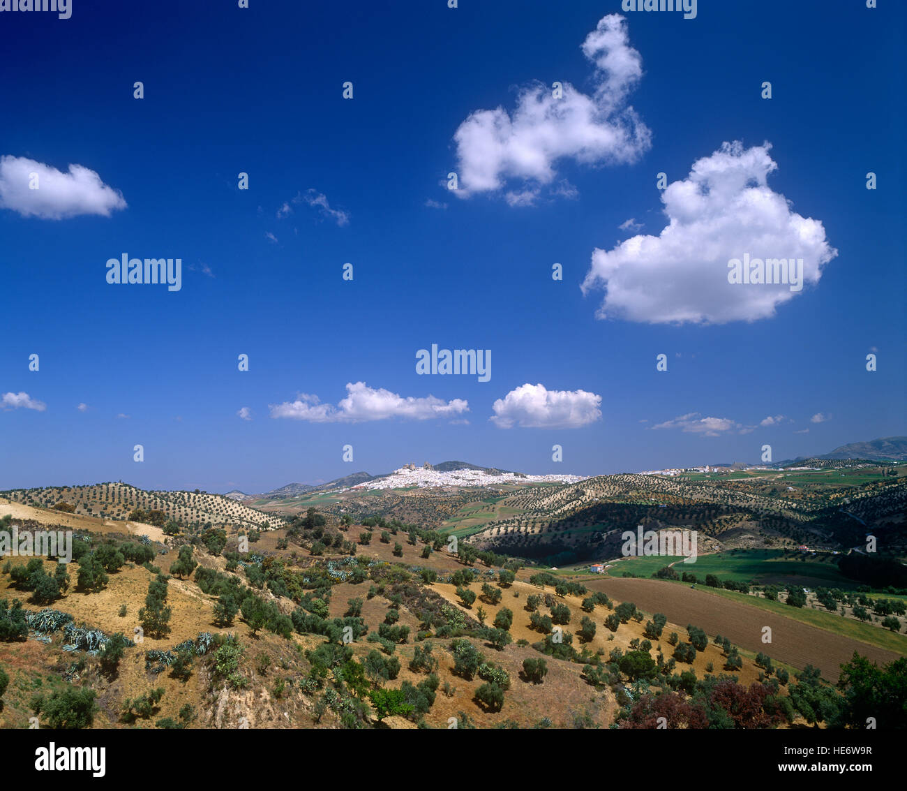 Andalucian landscape, White village of Olvera in the distance, near Malaga, Spain - Stock Image