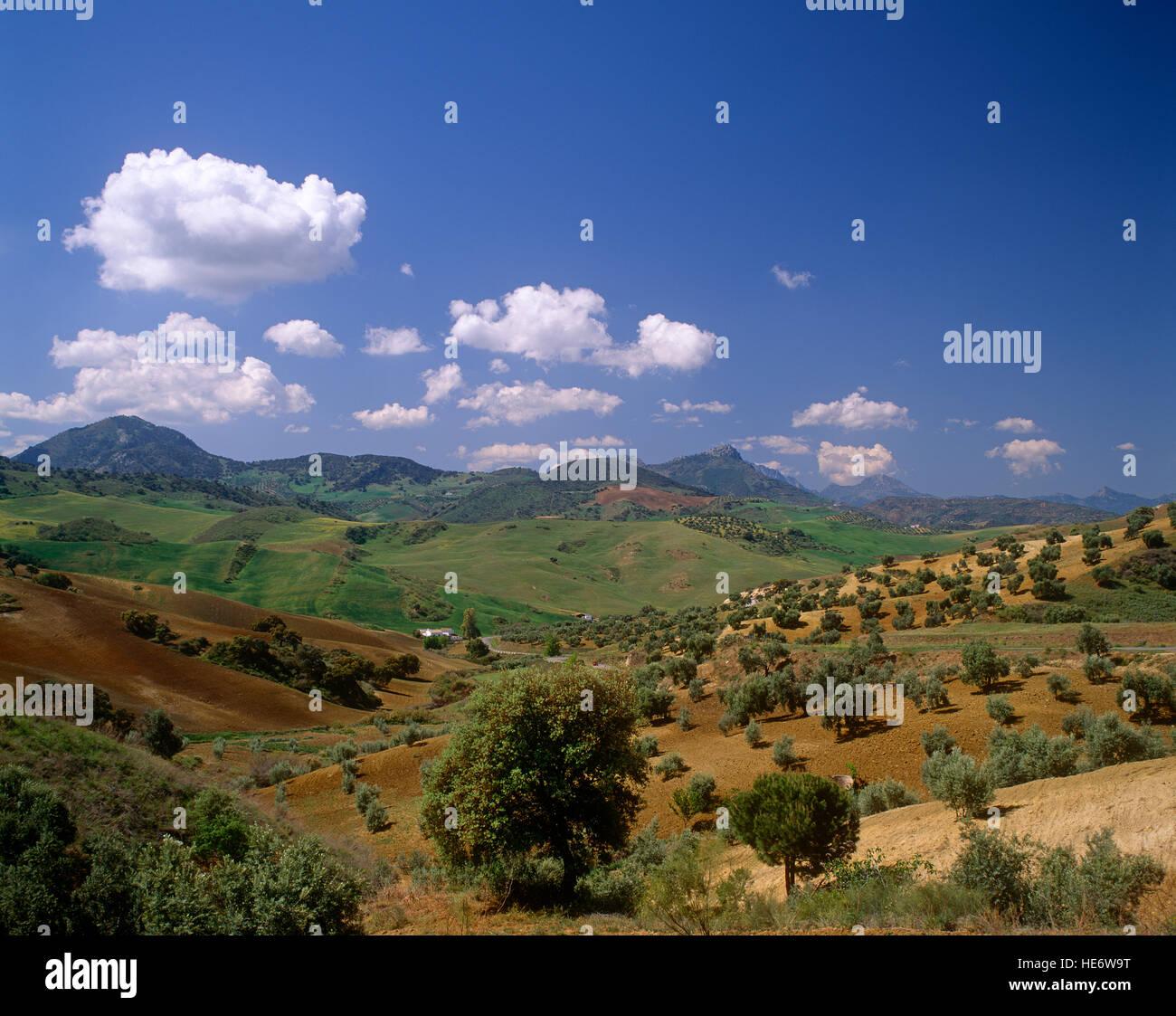 Andalucian landscape near Granada, Spain - Stock Image