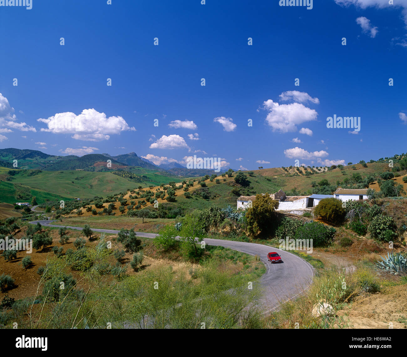 Andalusian landscape near Seville, Andalucia, Spain - Stock Image