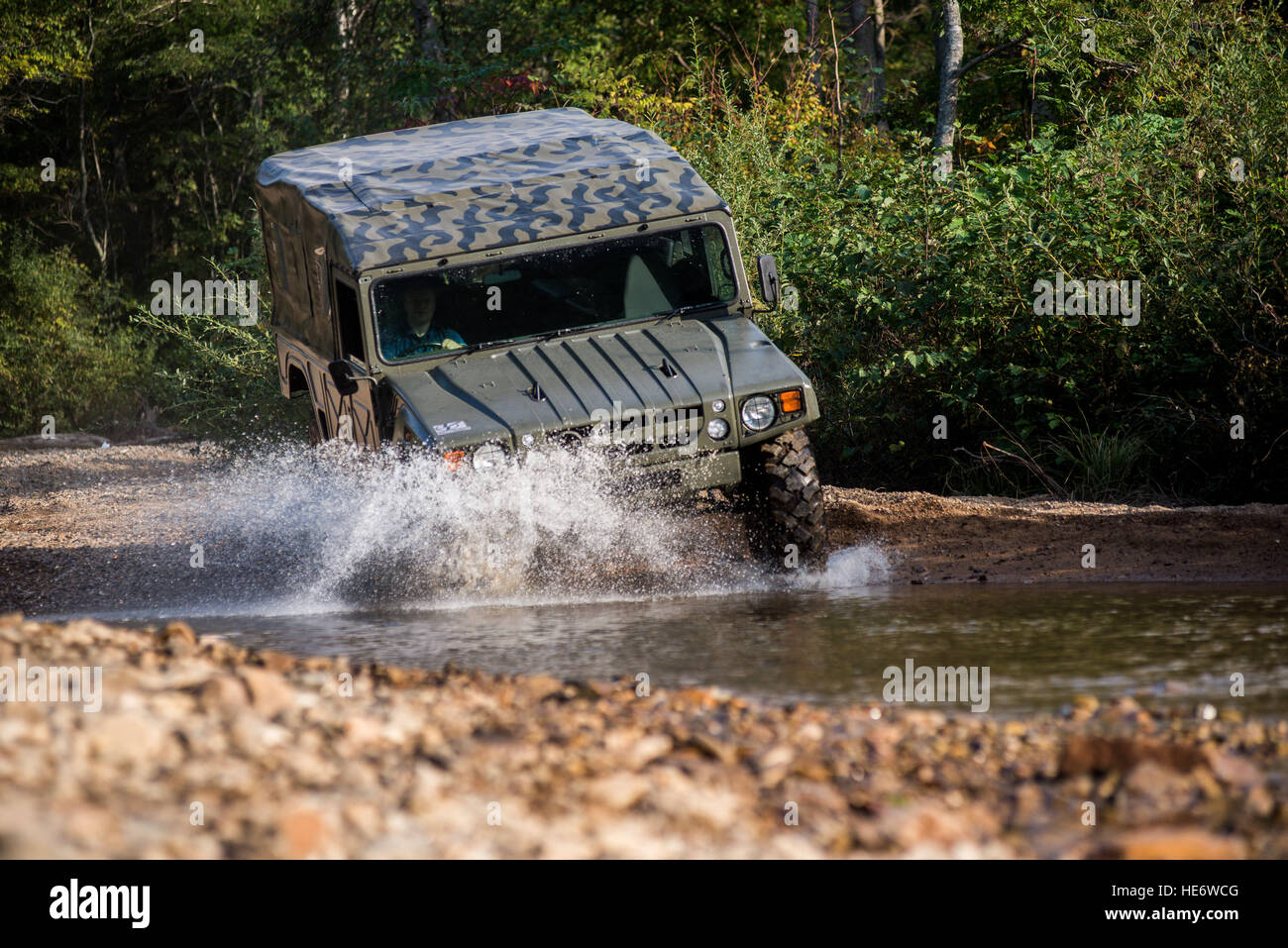 Suv Motor Car Toyota Mega Cruiser Driving On A Forest Stock Photo