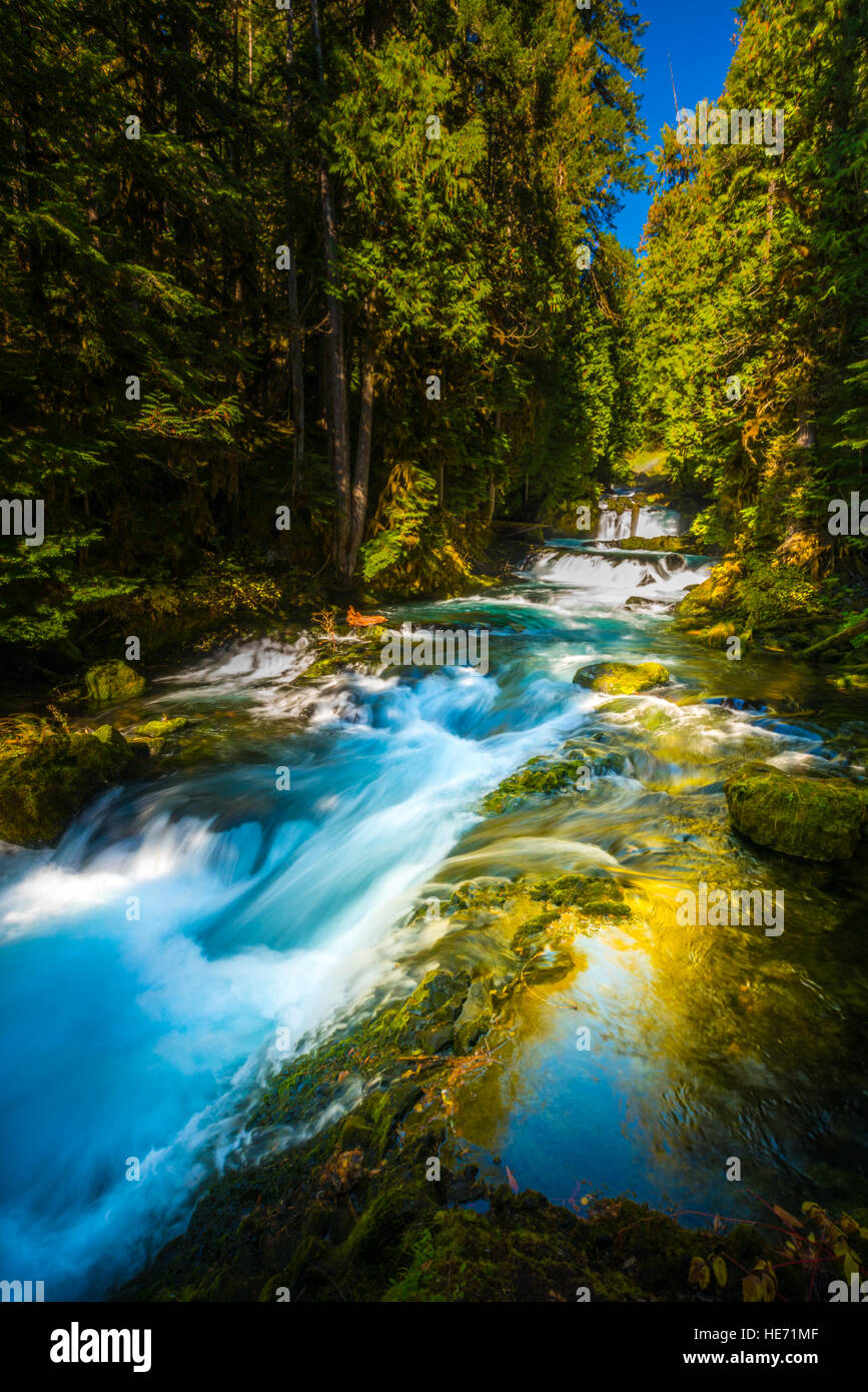 McKensie River down from Sahalie Falls Oregon Willamette National Forest Stock Photo