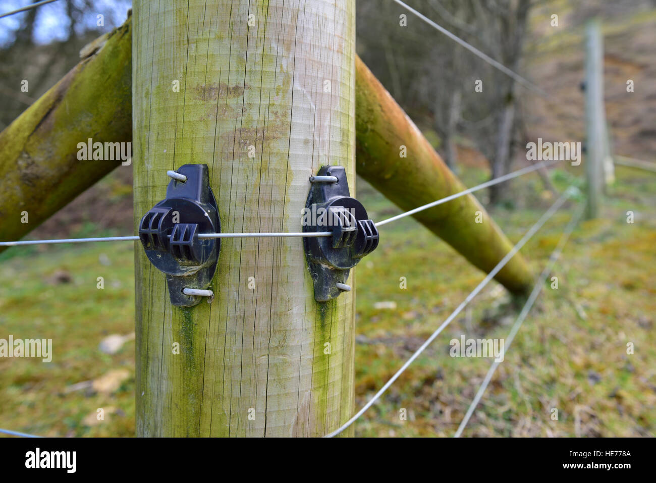 Electric fence wire going over insulators on wooden fence post, England - Stock Image