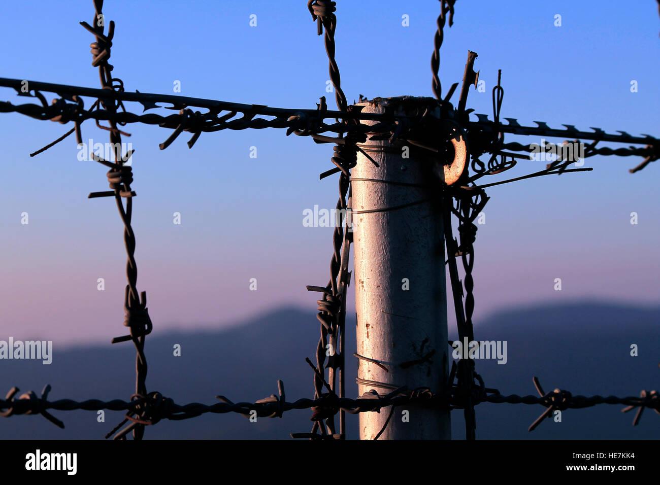 Fences - Stock Image