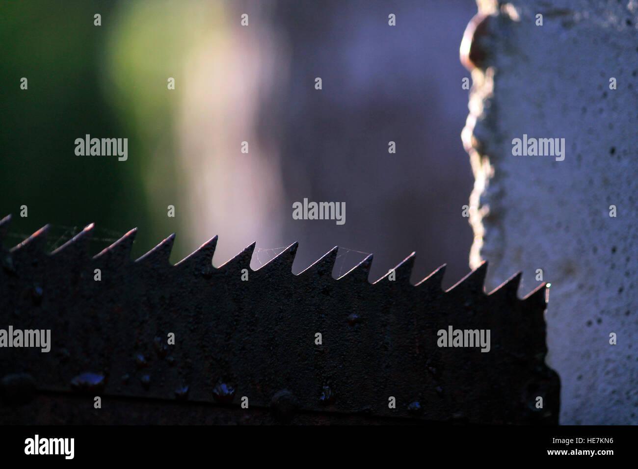 Blade - Stock Image
