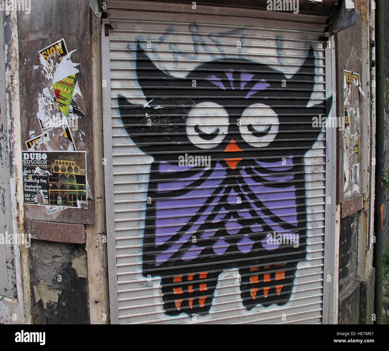 Belfast Garfield St Owl       City Centre, Northern Ireland, UK - Stock Image