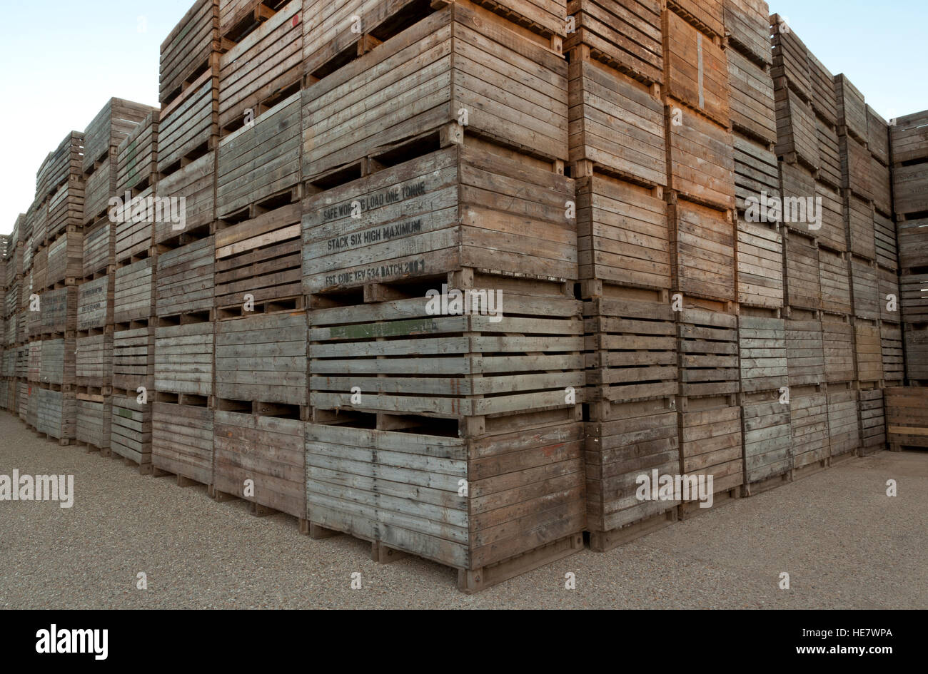 Bon Wooden Agricultural Potato Storage Boxes   Stock Image