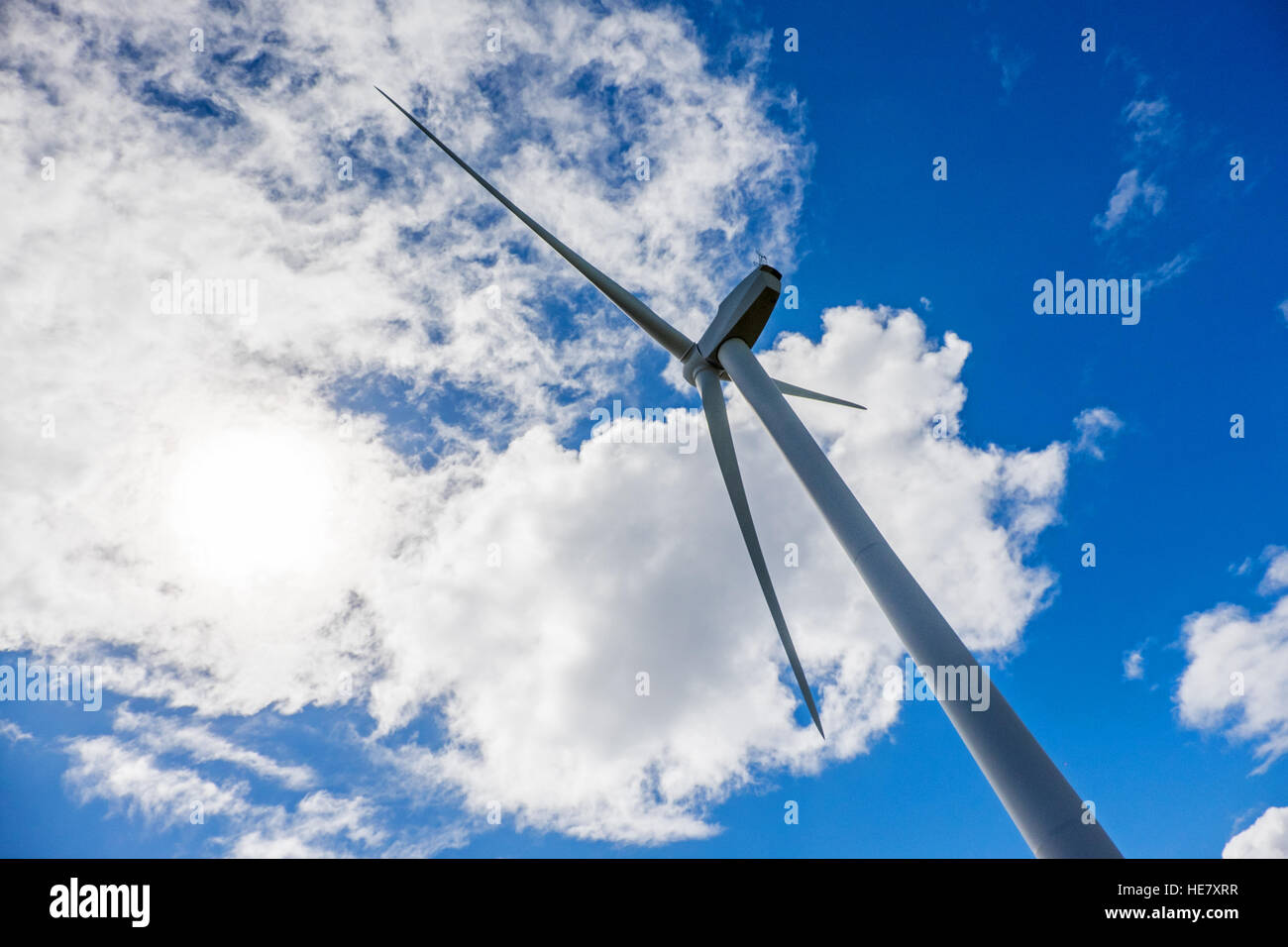 Wind turbine against a blue sky, Australia - Stock Image