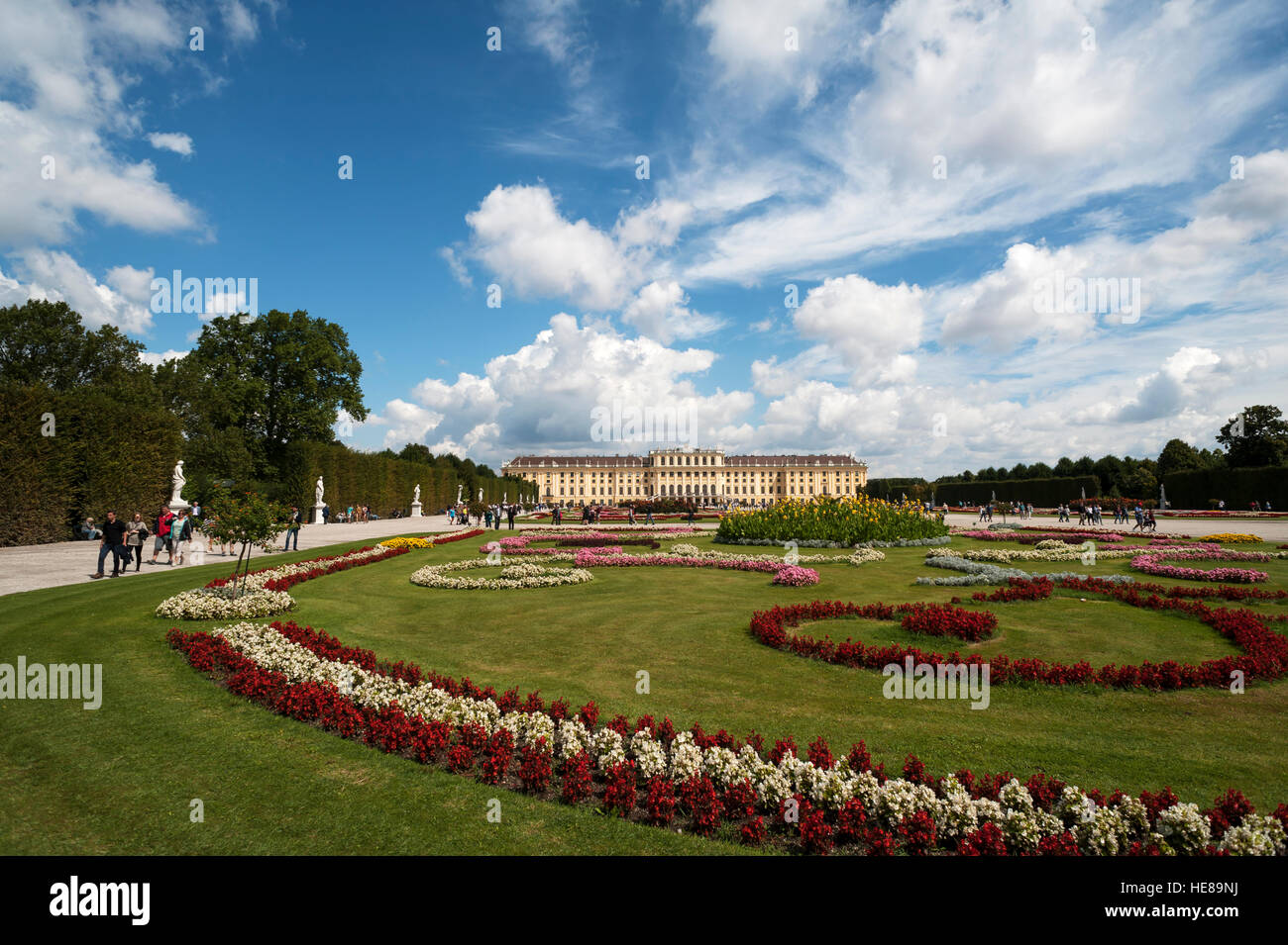 Flower bed in park, Schönbrunn Palace, Vienna, Austria - Stock Image