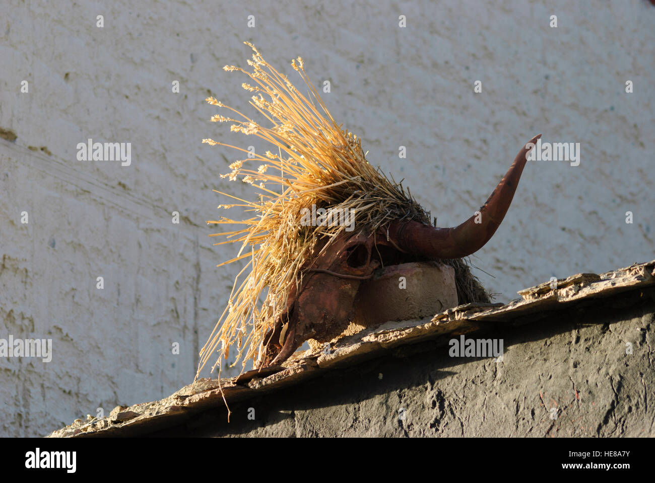Gyantse: Yak skull on Tibetan house, Tibet, China - Stock Image