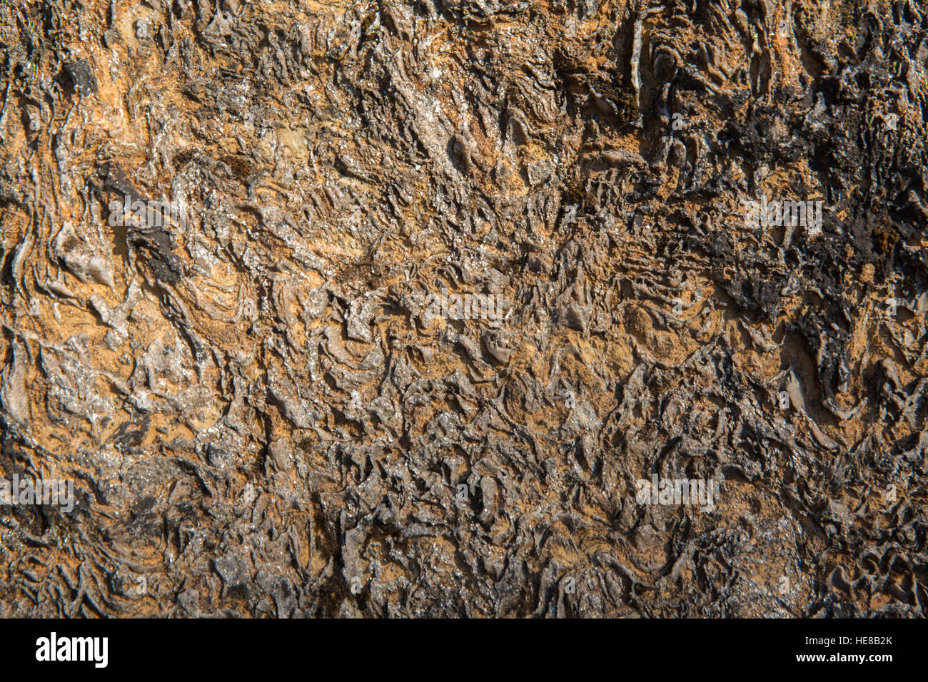 Unusual rock background texture rough with swirls and natural pattern and design - Stock Image