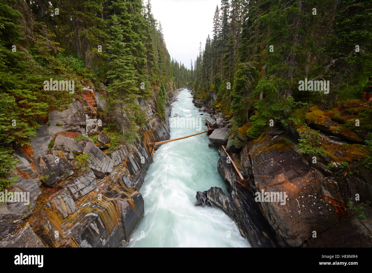 Creek in canyon Kootenay National park, Canada - Stock Image