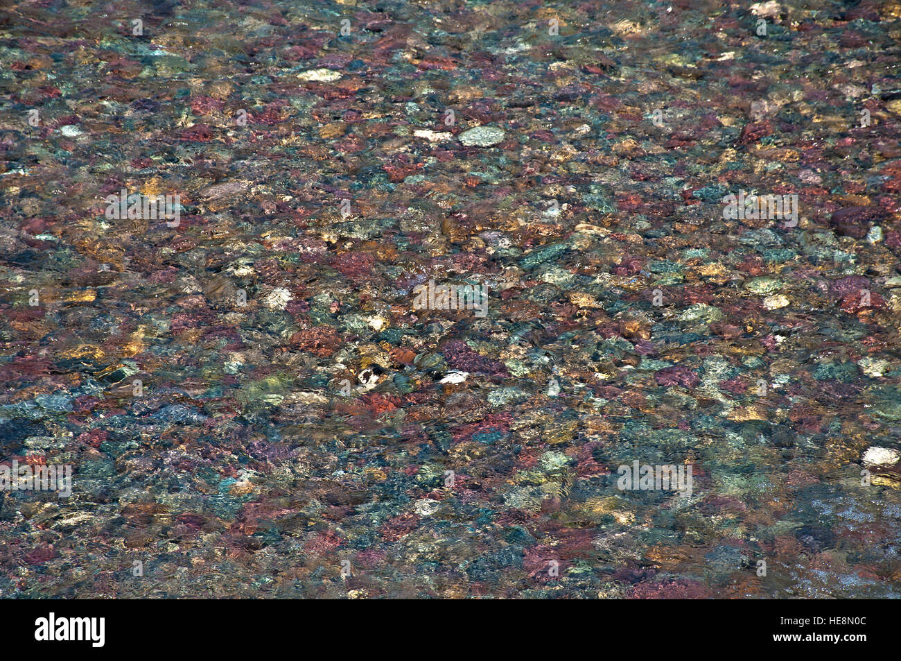 Colorful pebbles on river bed in Montana, USA Stock Photo
