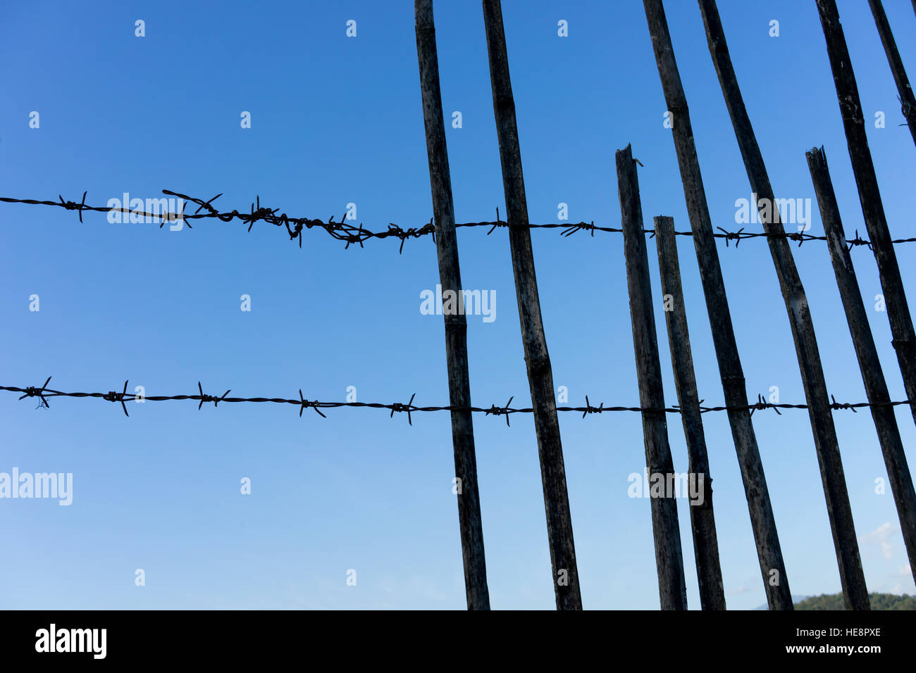 barbed wire on the background of blue sky - Stock Image