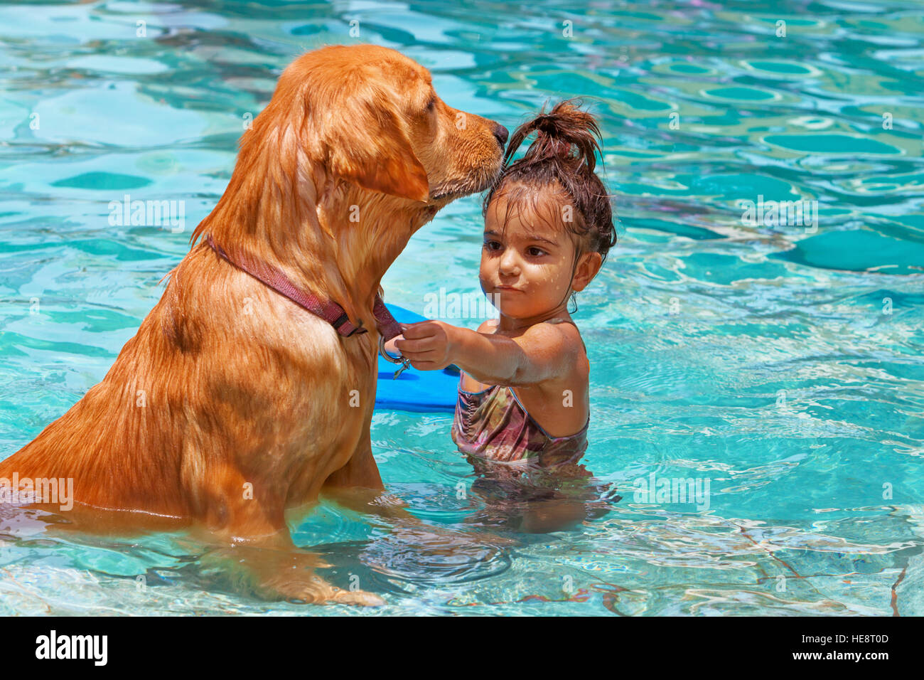 Funny photo of little baby swimming in outdoor pool, playing with retriever puppy. Children water sports activity. - Stock Image