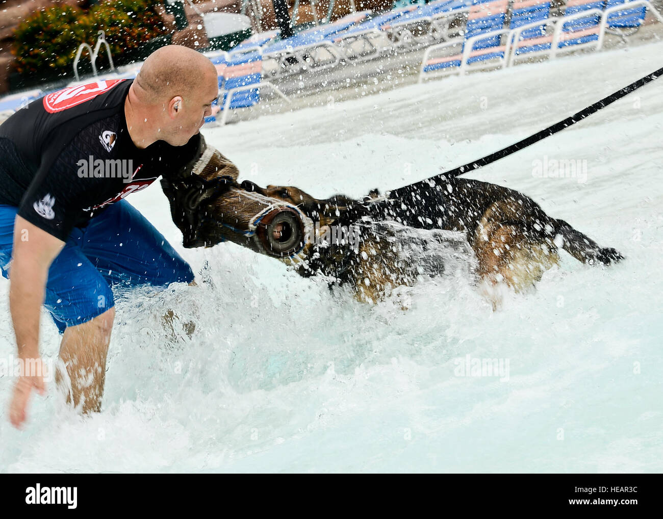 Ryan Flannigan, Tampa Police Department canine handler, conditions Rick, 6th Security Forces squadron military working - Stock Image