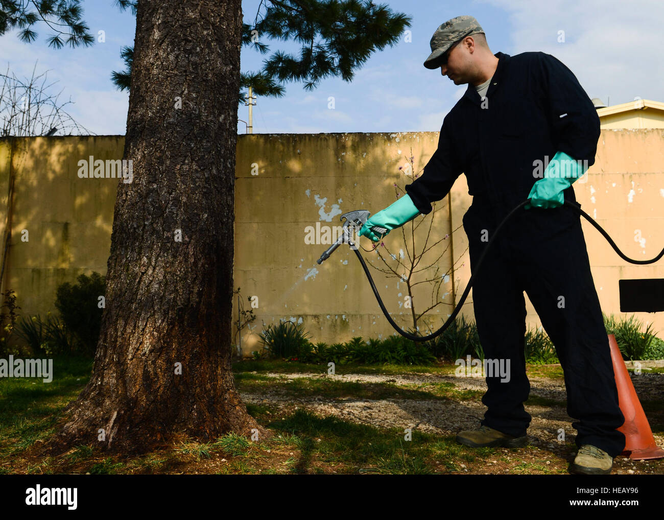 U.S. Air Force Tech. Sgt. Adrian Pozo-Romero, 31st Civil Engineer Squadron pest control technician, sprays a tree - Stock Image