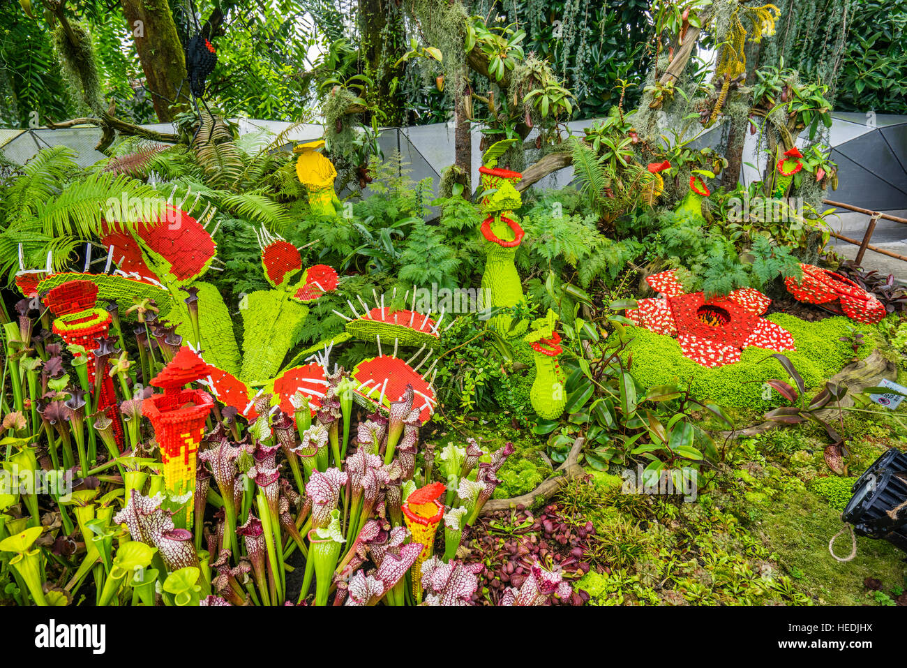 Singapore, Gardens by the Bay, Lego carnivorous plants at the Cloud Forest green house - Stock Image