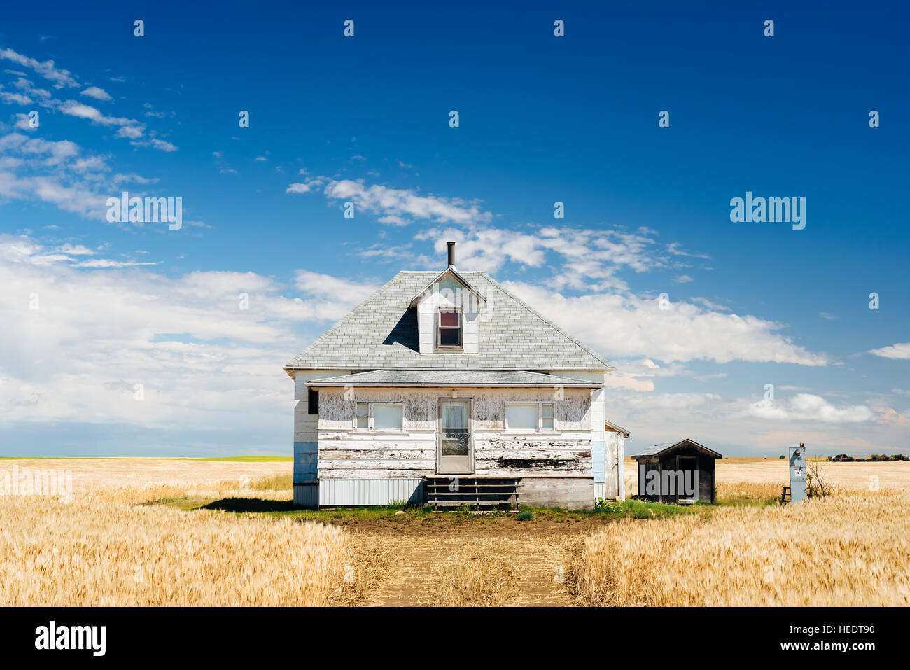 A farm house sits abandoned, surrounded by fields of wheat in rural Saskatchewan - Stock Image
