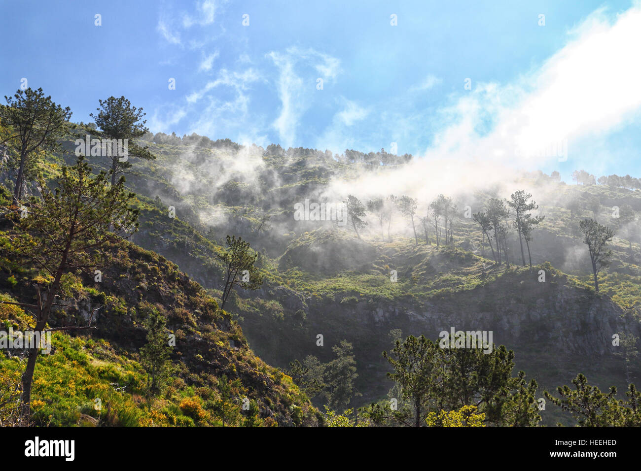 Mountain view on the Portuguese island of Madeira - Stock Image