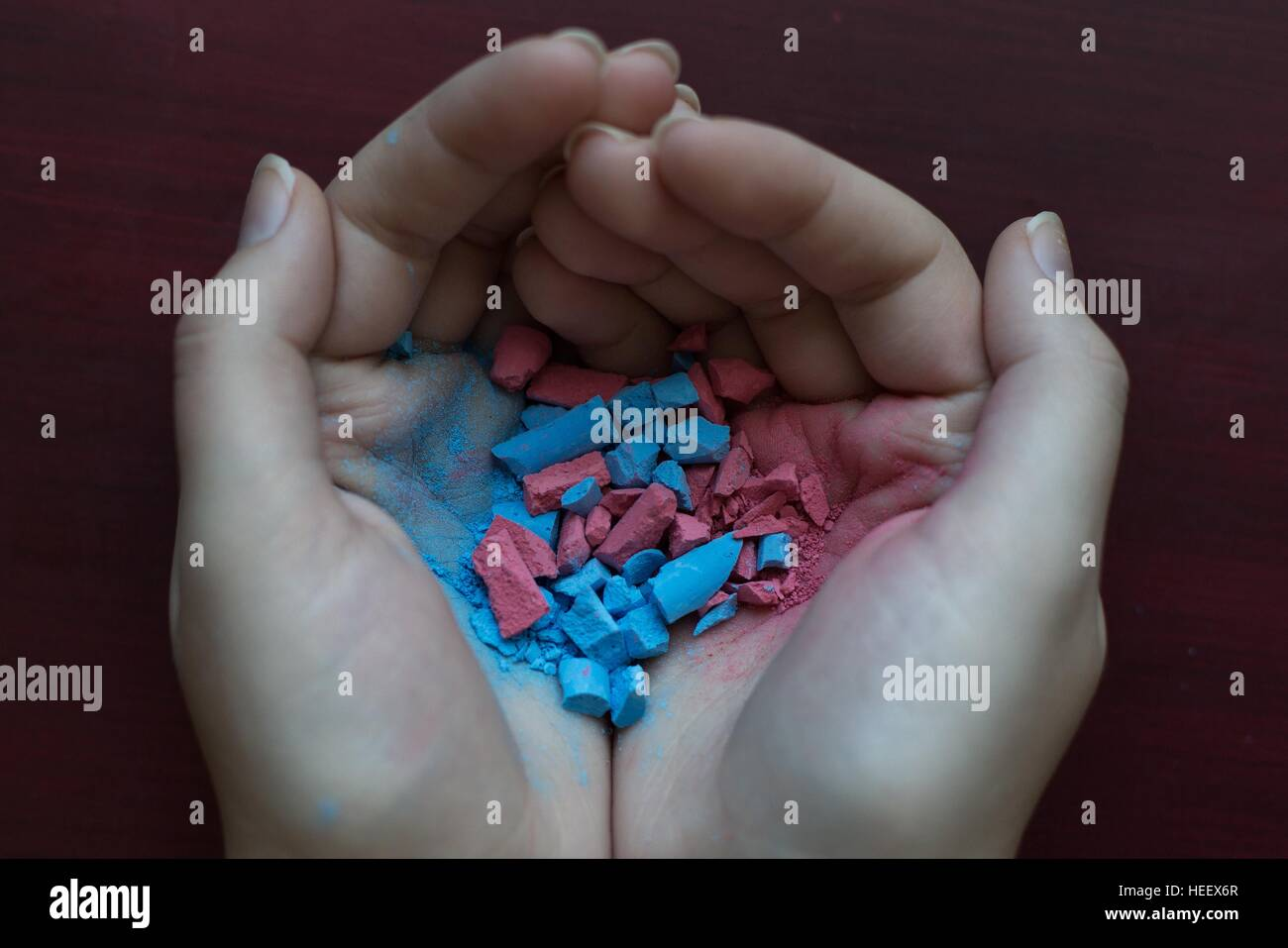 Cupped hands holding both pink and blue chalk, mixed and crumbled together. - Stock Image