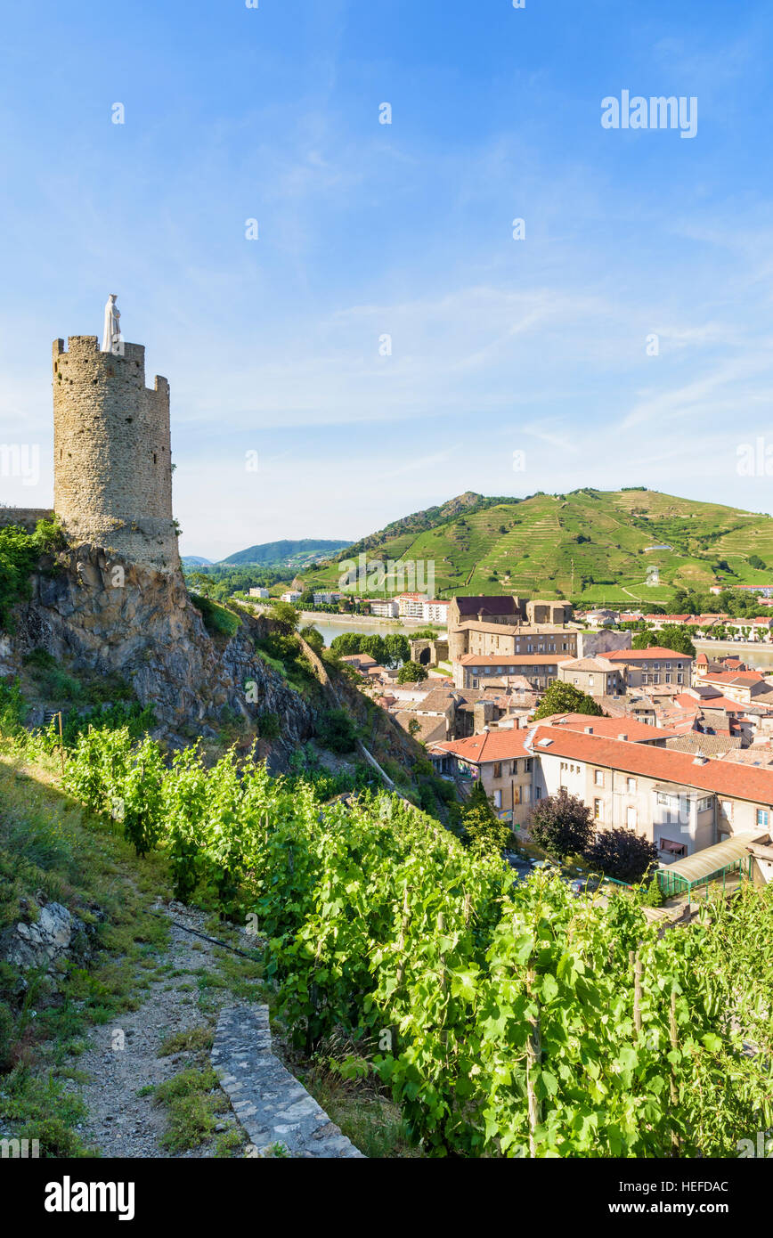 16th century watchtower Tour de l'Hôpital surrounded by terraced vineyards above Tournon-sur-Rhône, Ardèche, - Stock Image