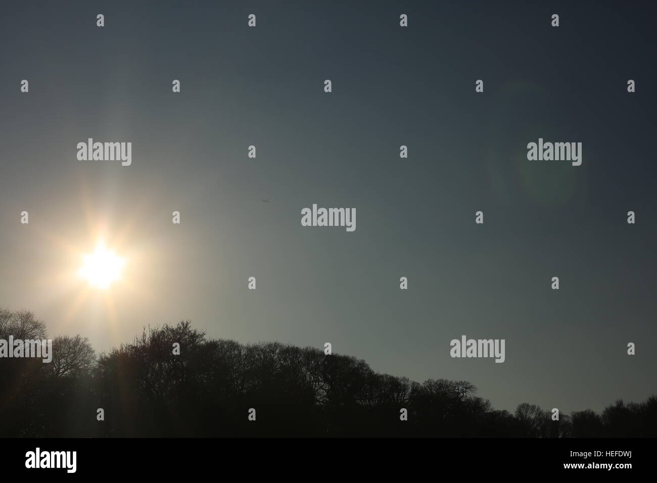 Image of sun sitting on top of trees, creating negative space. - Stock Image