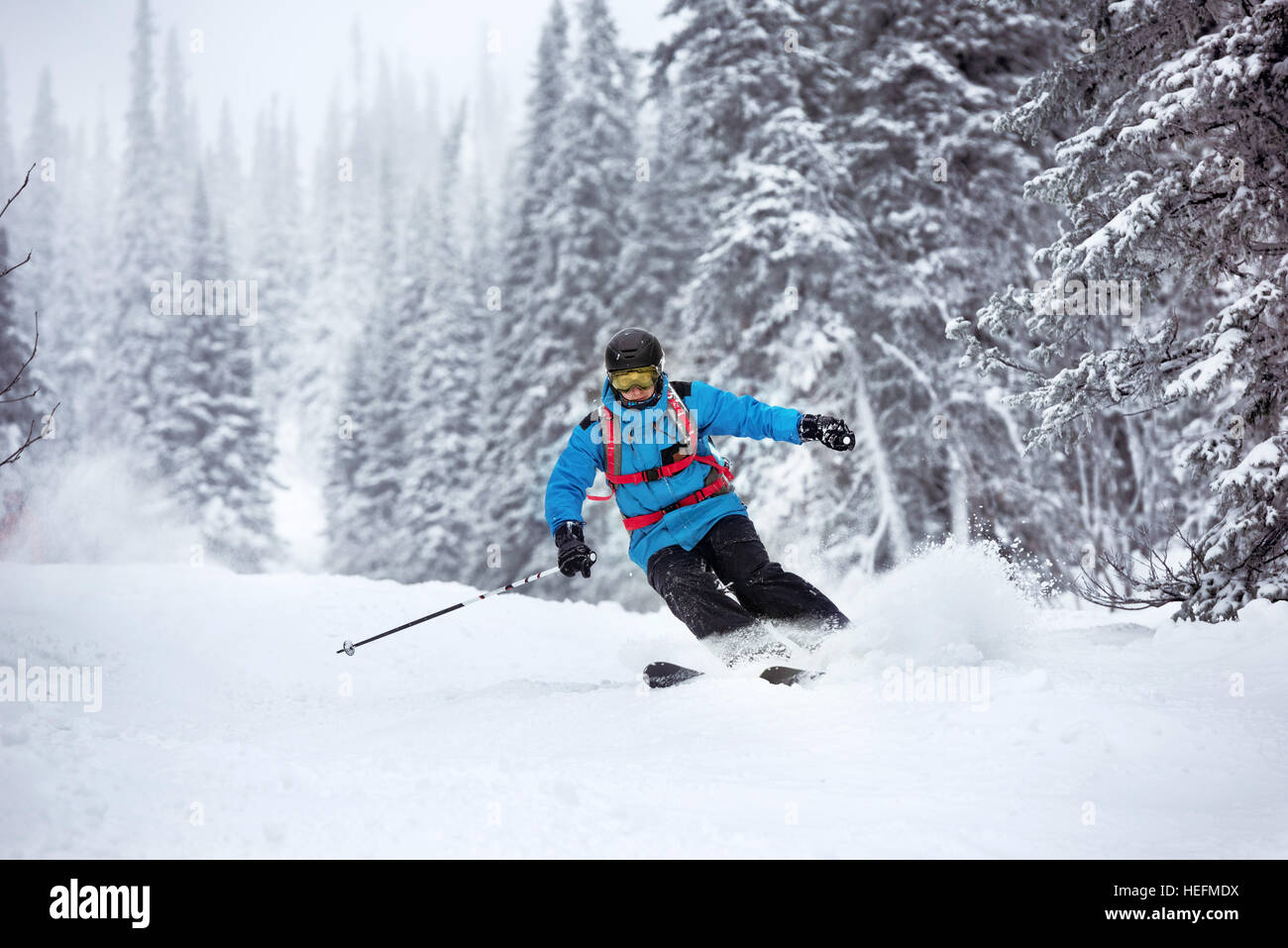 Skier moving fast forest off-piste - Stock Image