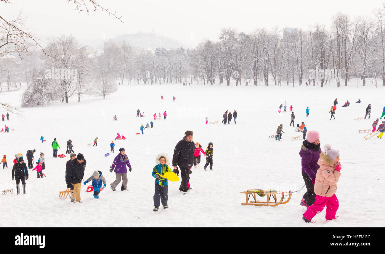 Winter fun, snow, family sledding at winter time. - Stock Image