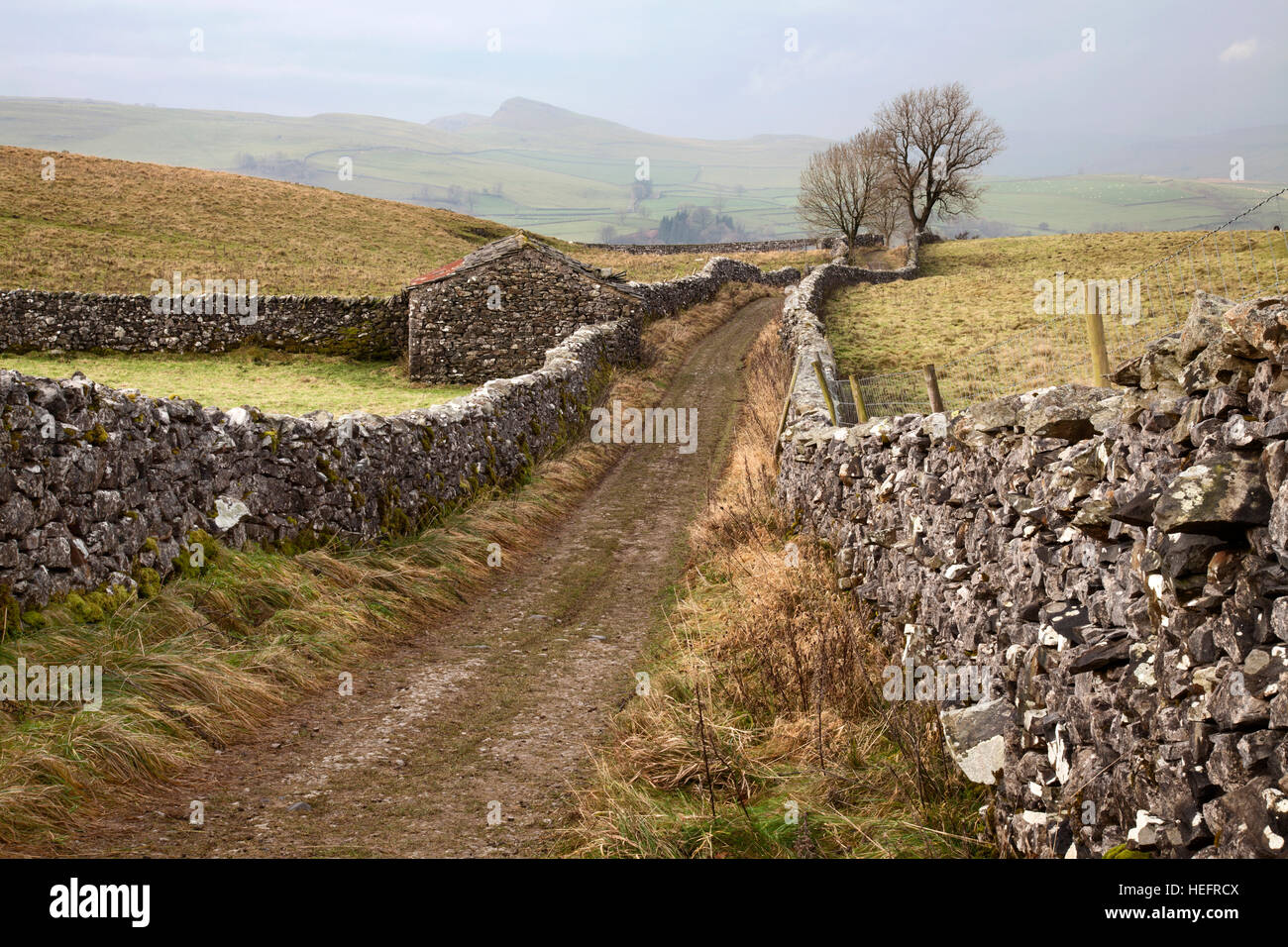 Pennine Bridleway at Stainforth, near Settle, North Yorkshire Dales - Stock Image