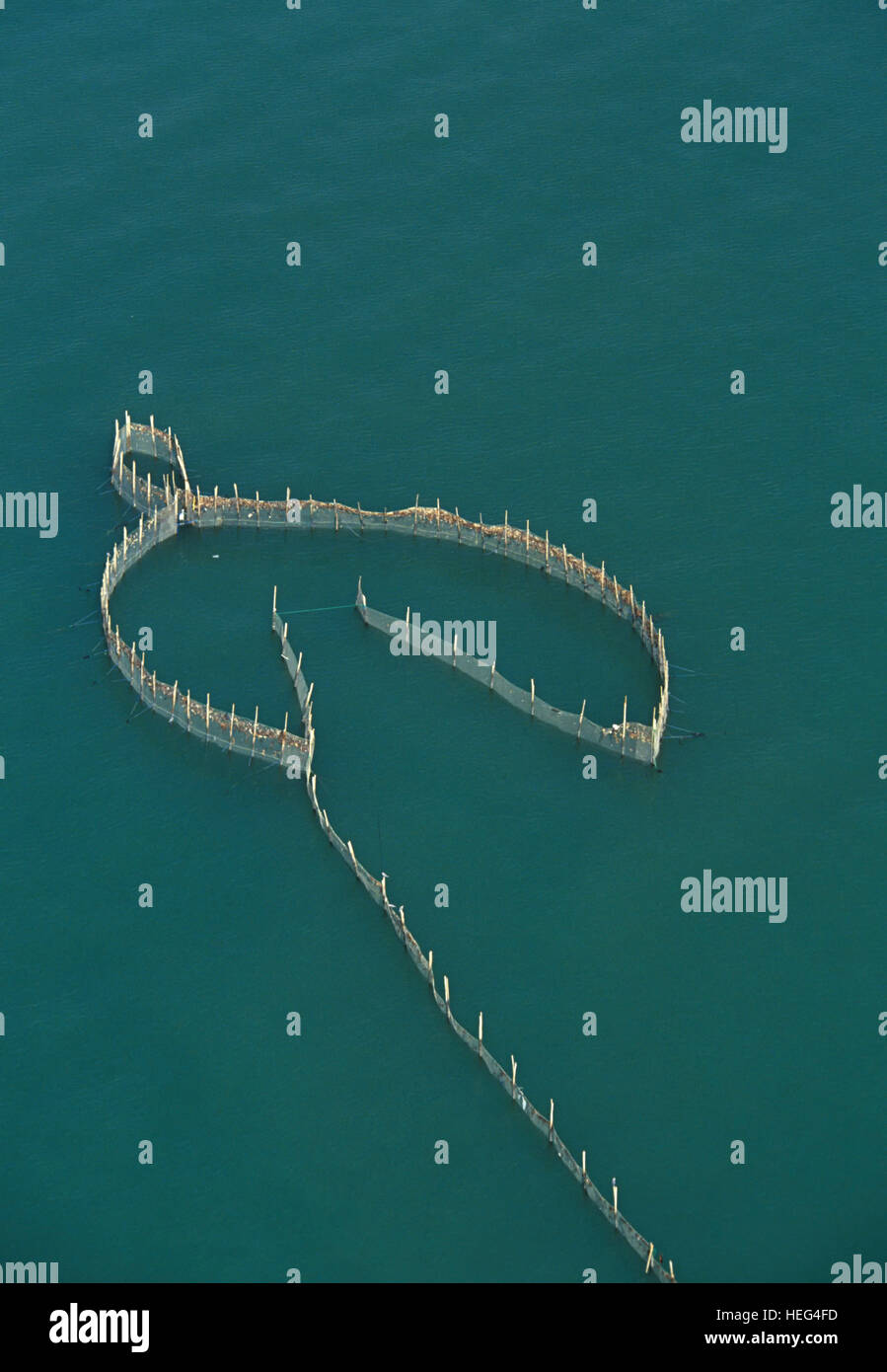 Aerial view of traditional fishing trap on Persian Gulf. Kuwait - Stock Image