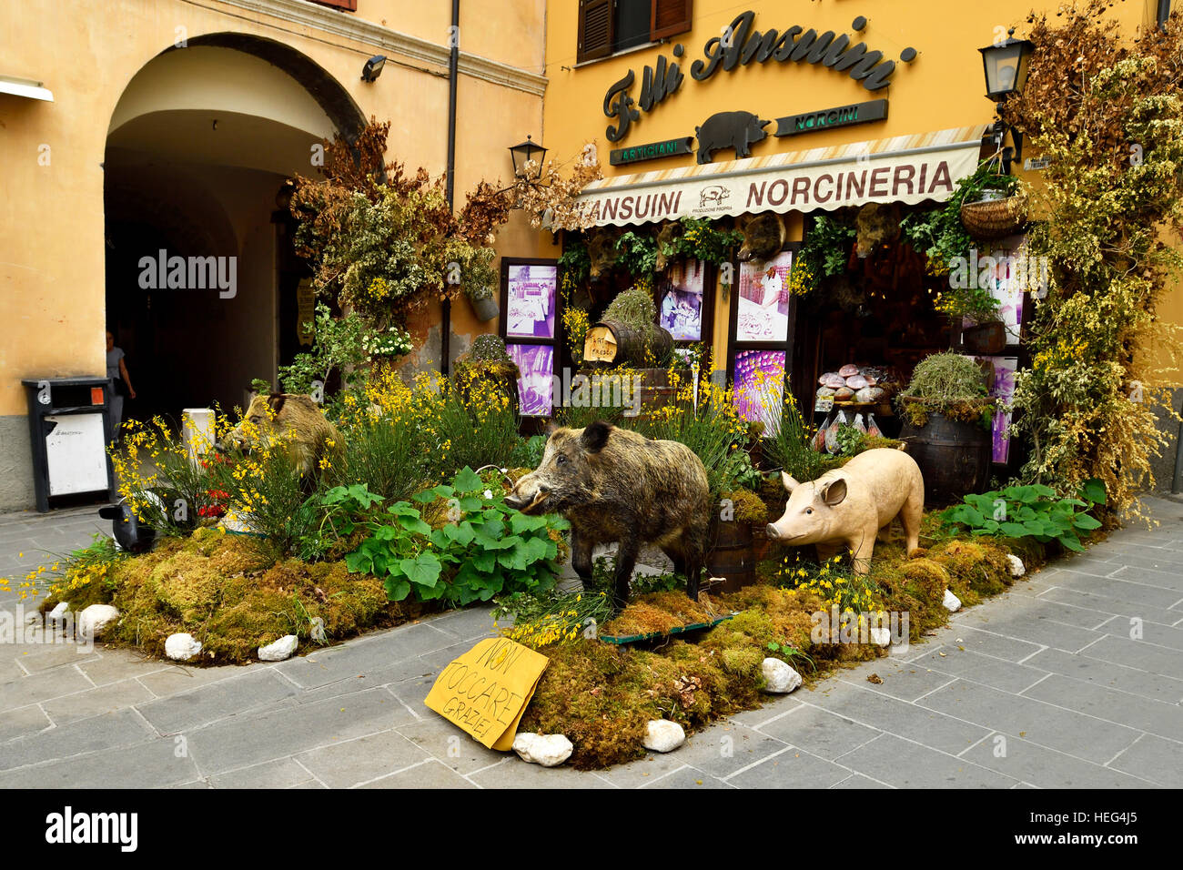 Decorated specialties, butcher with wild boar products, Norcia, Perugia, Umbria, Italy - Stock Image