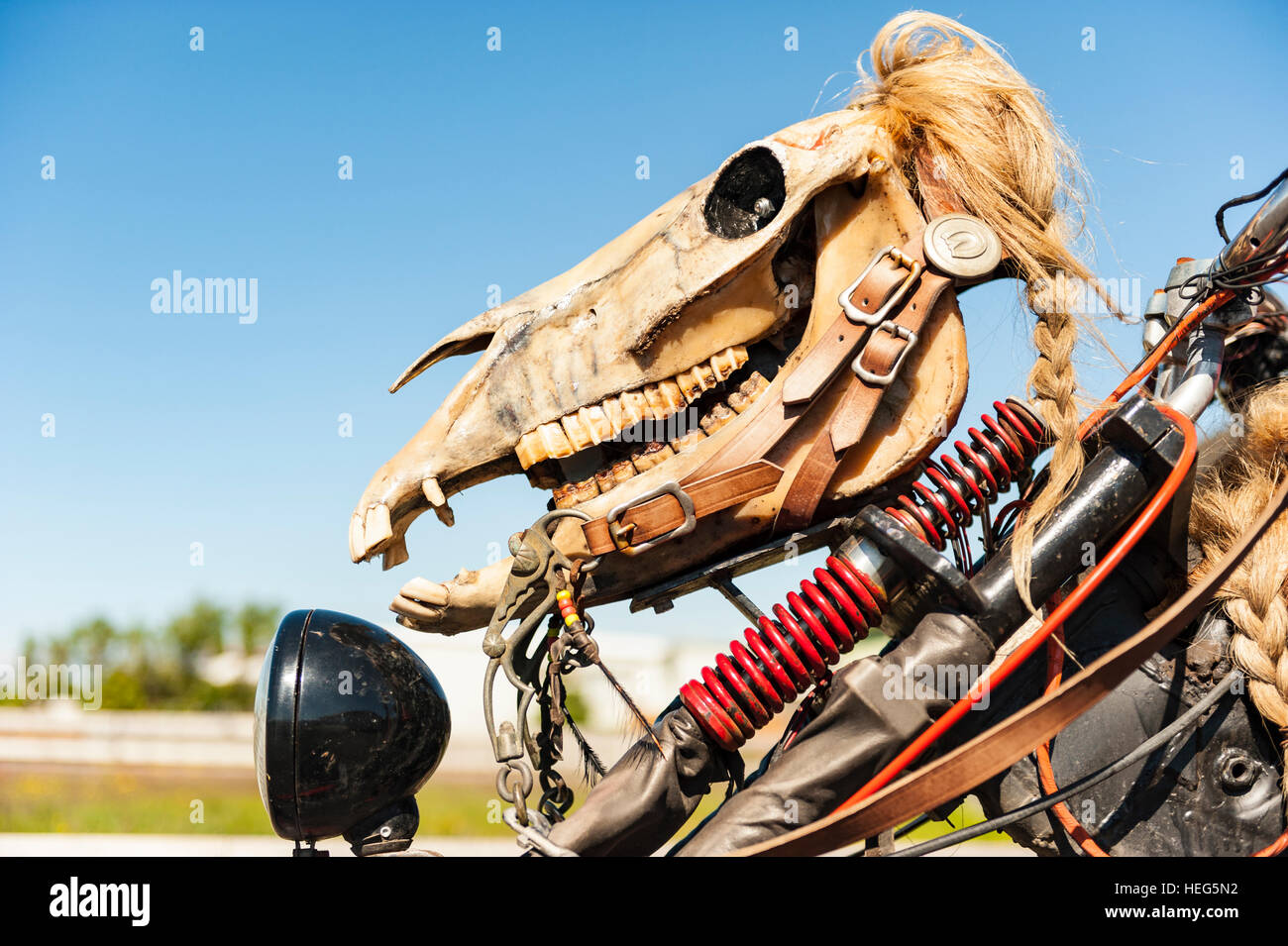 Detail of a horse skull with a wig in the front of a custom-made motorcycle / chopper. - Stock Image
