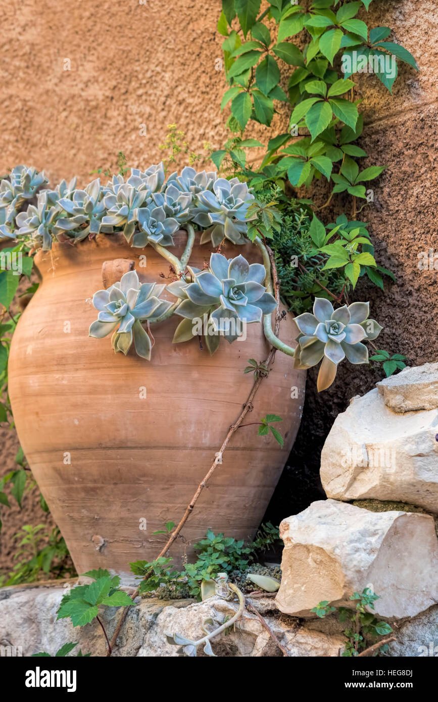 Large Clay Pot With Mediterranean Plants In Southern France Stock