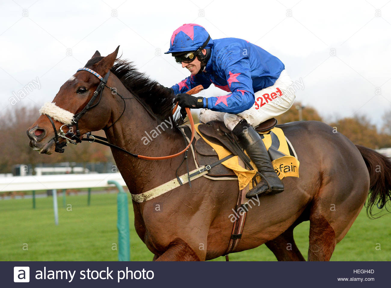 File photo dated 19-11-2016 of Cue Card ridden by Paddy Brennan. - Stock Image