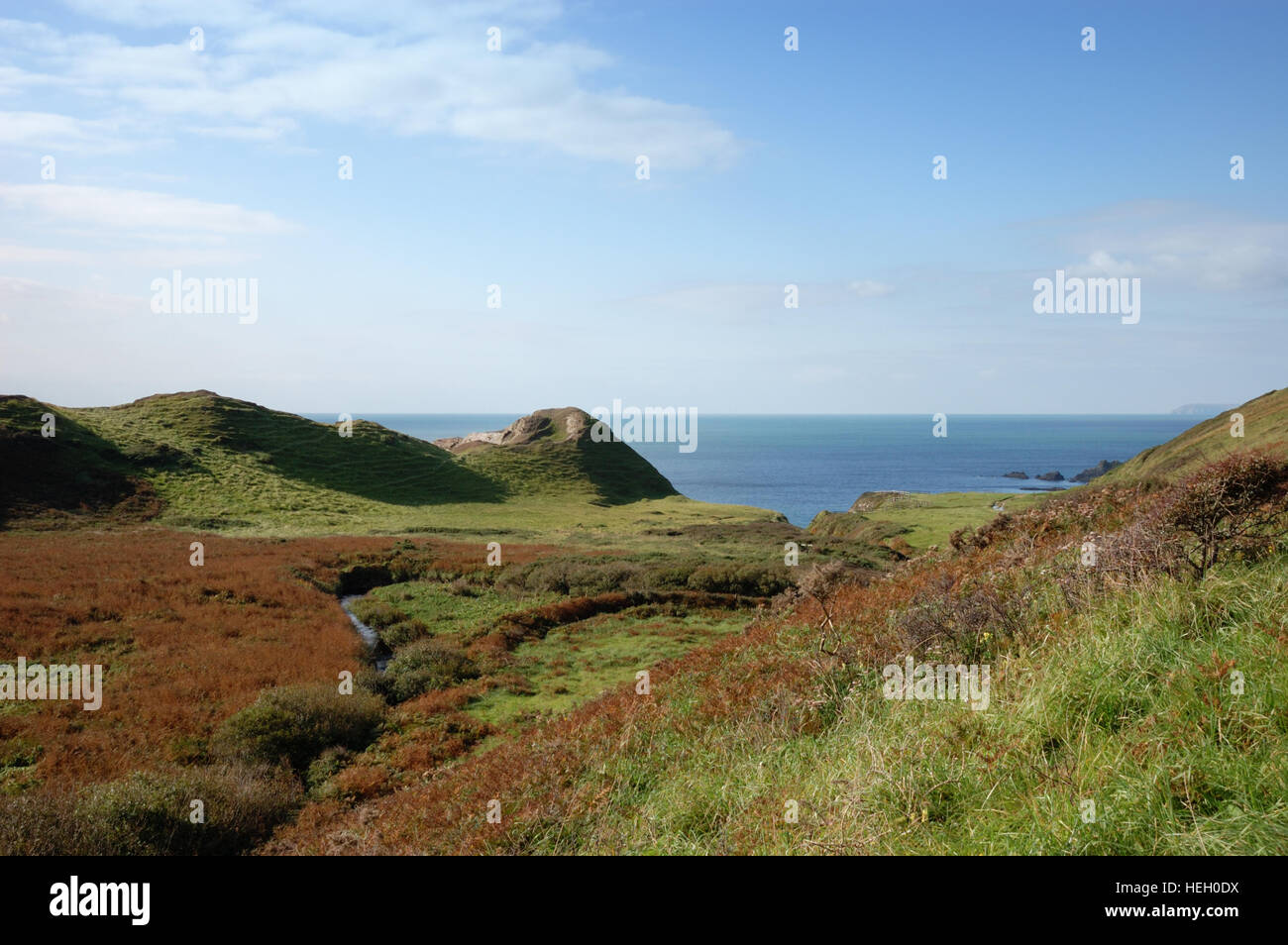 Speke's Mill valley looking towards Brownspear Point and Speke's Mill Mouth on the South West Coast Path in North Stock Photo