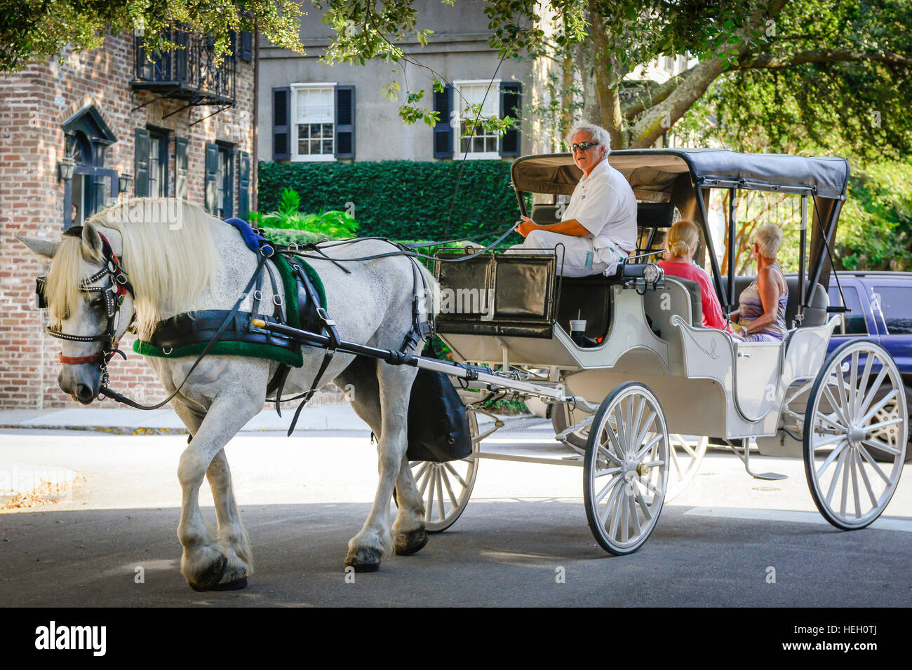 A Beautiful White Horse Pulls A Vintage Carriage Along With A Tour Stock Photo Alamy