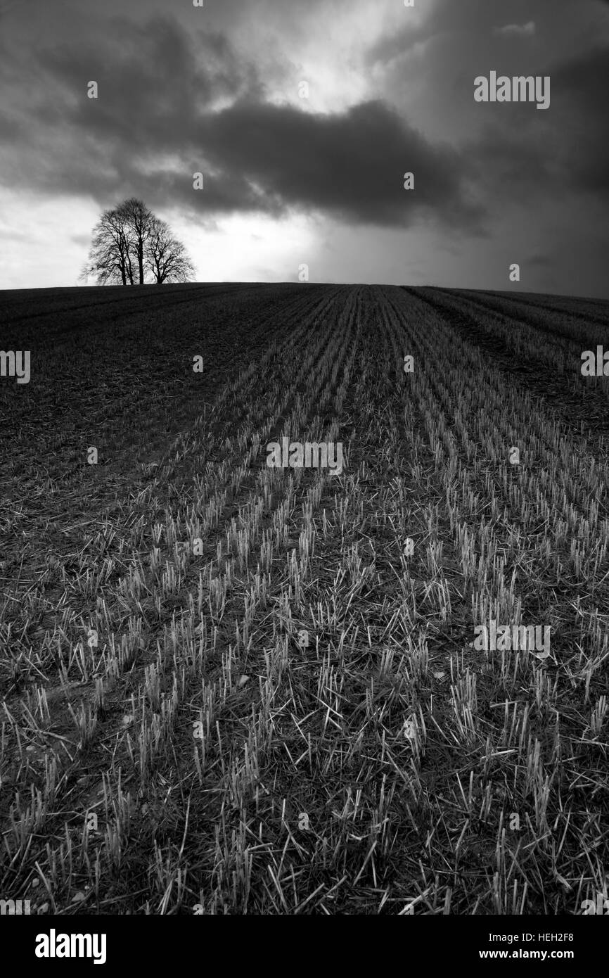 Brightwell Barrow, Oxfordshire, England - Stock Image