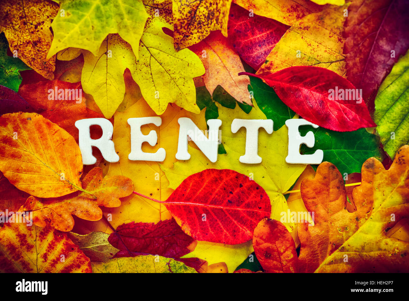 Schriftzug Rente auf Herbstblaettern Stock Photo