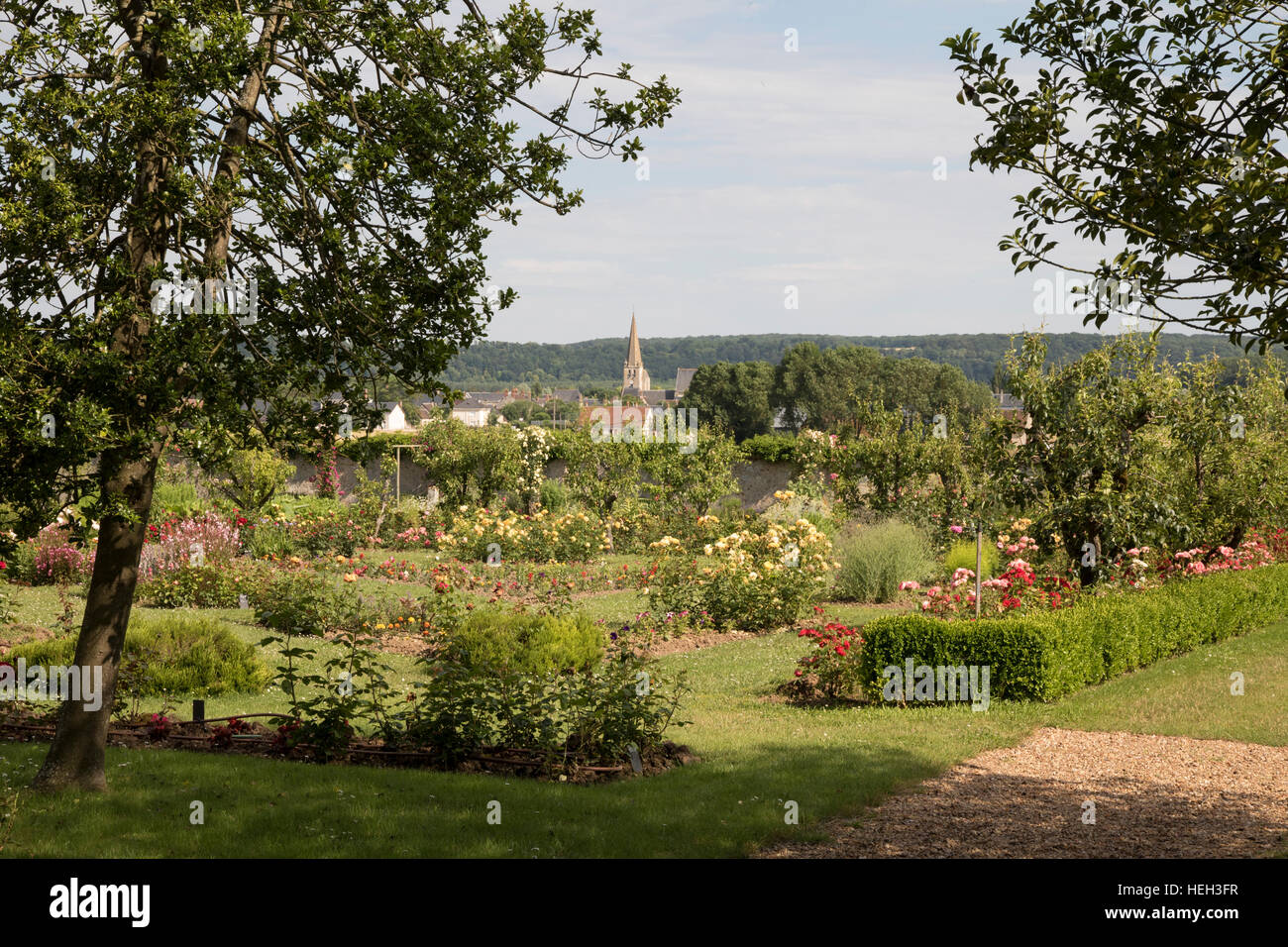 The Rose Garden at La Possonniere, birthplace of the poet Ronsard - Stock Image