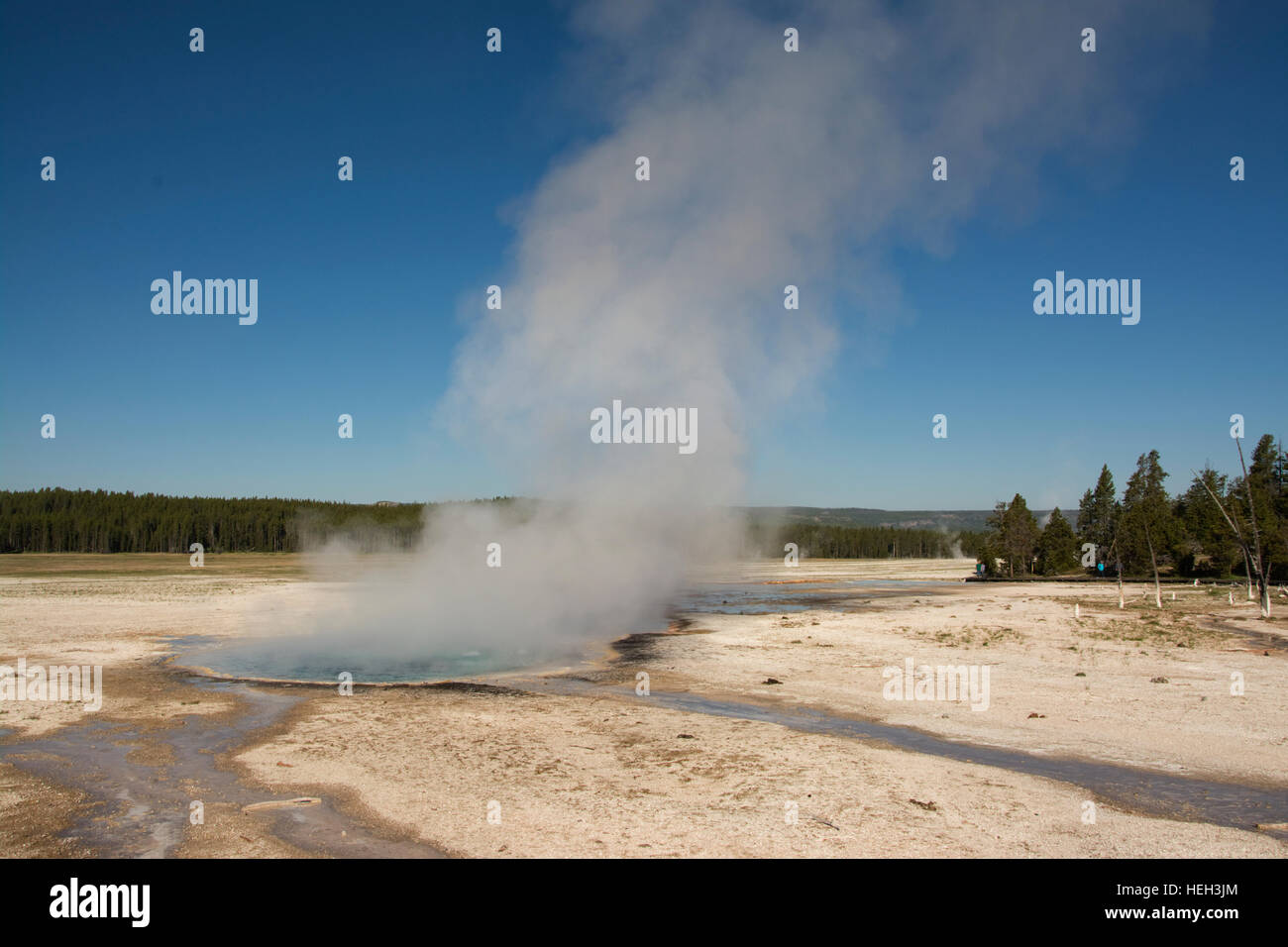 United States of America, USA, Wyoming, WY, Yellowstone National Park,  Fountain Paint Pots Trail, Celestine Pool, Stock Photo