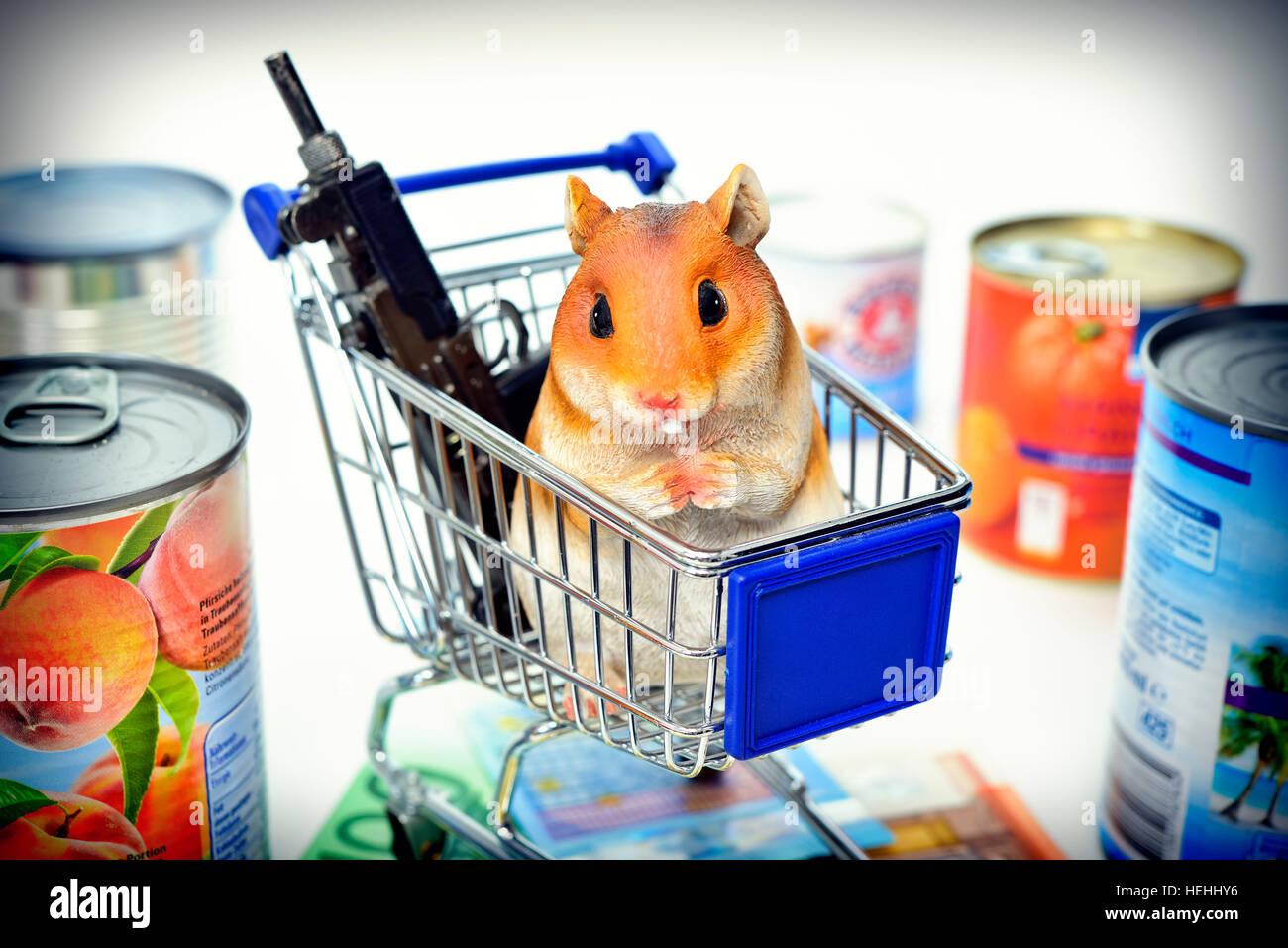 Hamsterfigur im Einkaufswagen, Symbolfoto Hamsterkaeufe Stock Photo