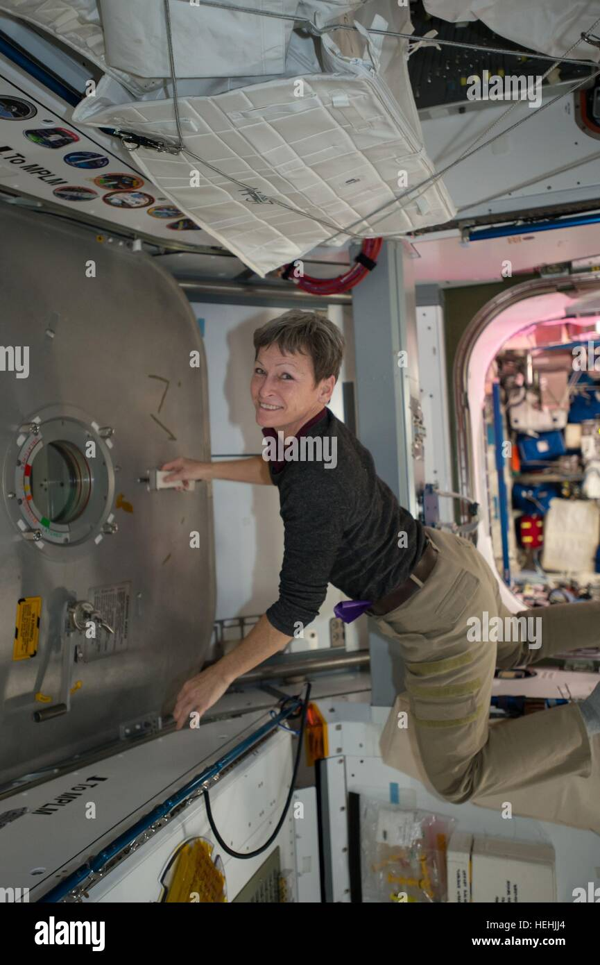 NASA Expedition 50 prime crew member astronaut Peggy Whitson works inside the International Space Station Harmony - Stock Image